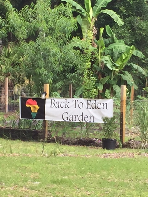 Back To Eden Garden